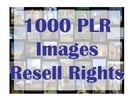 Thumbnail 1000 PLR Images in 10 Niches + Bonus with Resell Rights